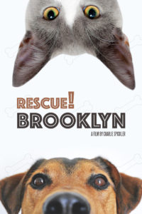 Rescue! Brooklyn
